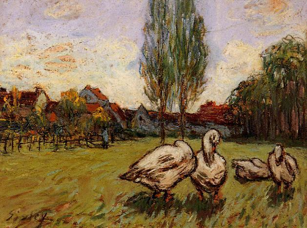 Geese  1897 | Alfred Sisley | Oil Painting