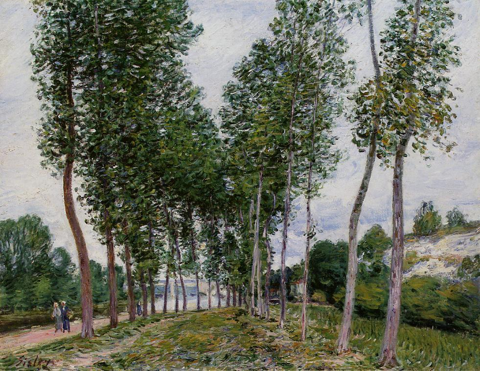 Lane of Poplars on the Banks of the Loing  1892 | Alfred Sisley | Oil Painting