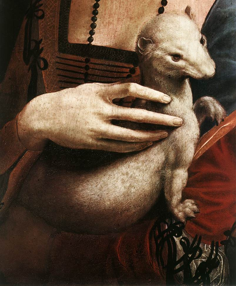 Portrait of Cecilia Gallerani detail 1 | Leonardo Da Vinci | Oil Painting