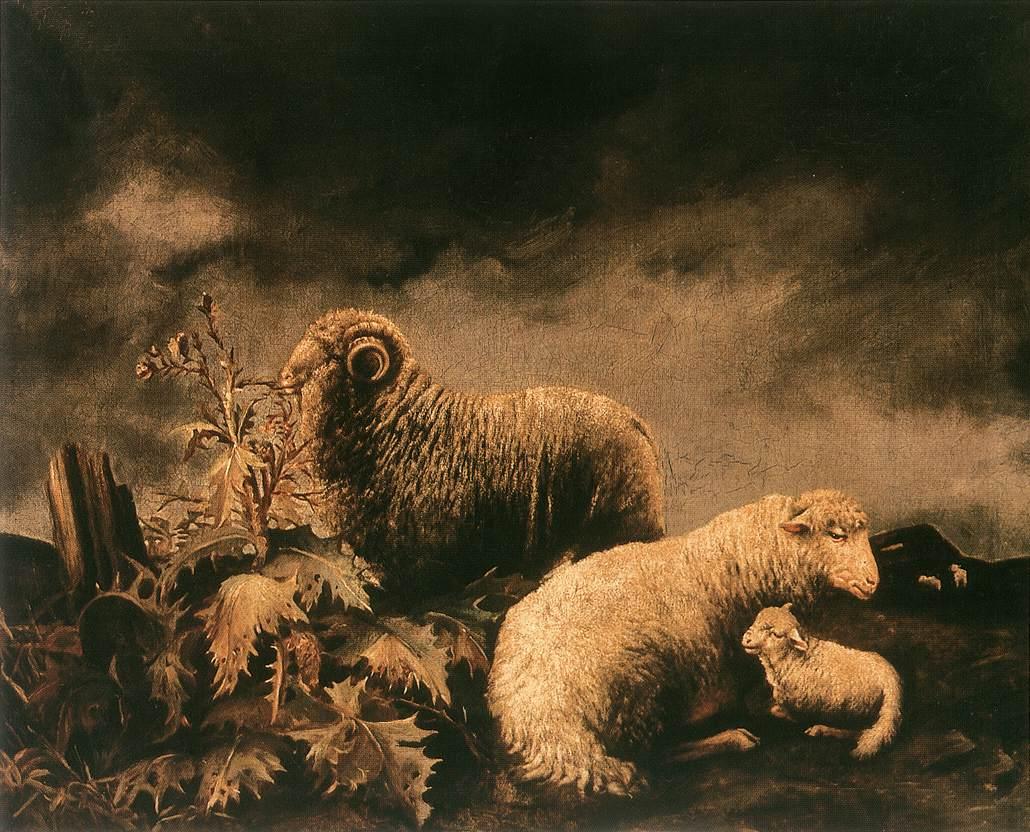 Sheeps | Bela Pallik | Oil Painting