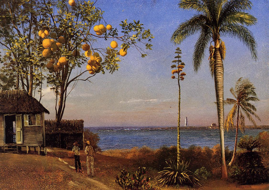 A View in the Bahamas | Albert Bierstadt | Oil Painting