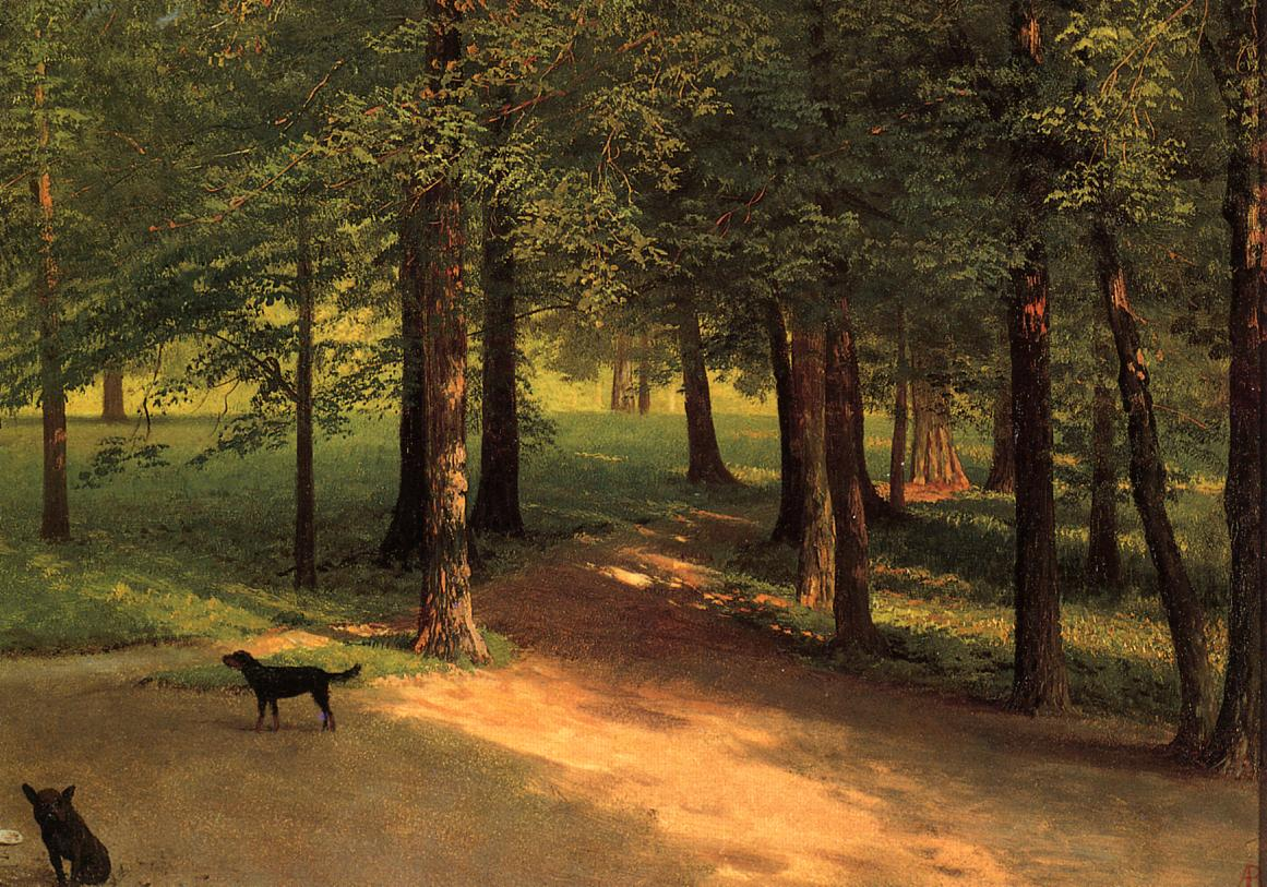 Irvington Woods | Albert Bierstadt | Oil Painting