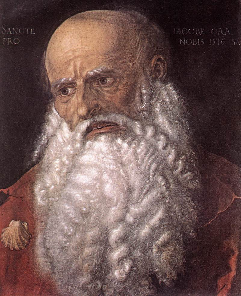 The Apostle James The Elder 1516 | Albrecht Durer | Oil Painting