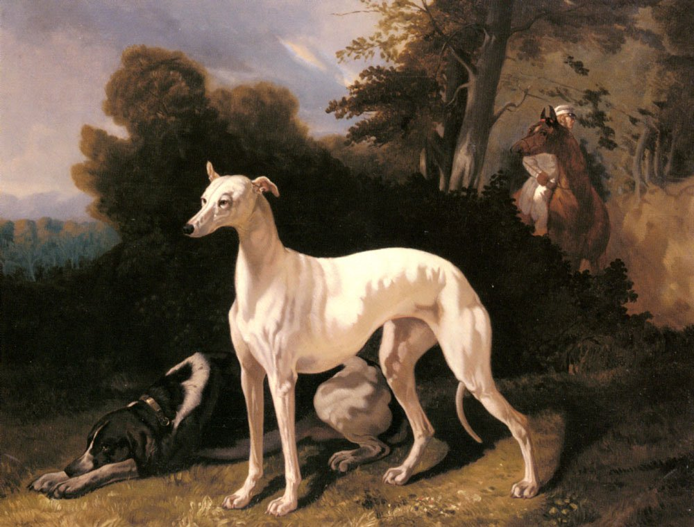 A Greyhound In An Extensive Landscape | Alfred De Dreux | Oil Painting