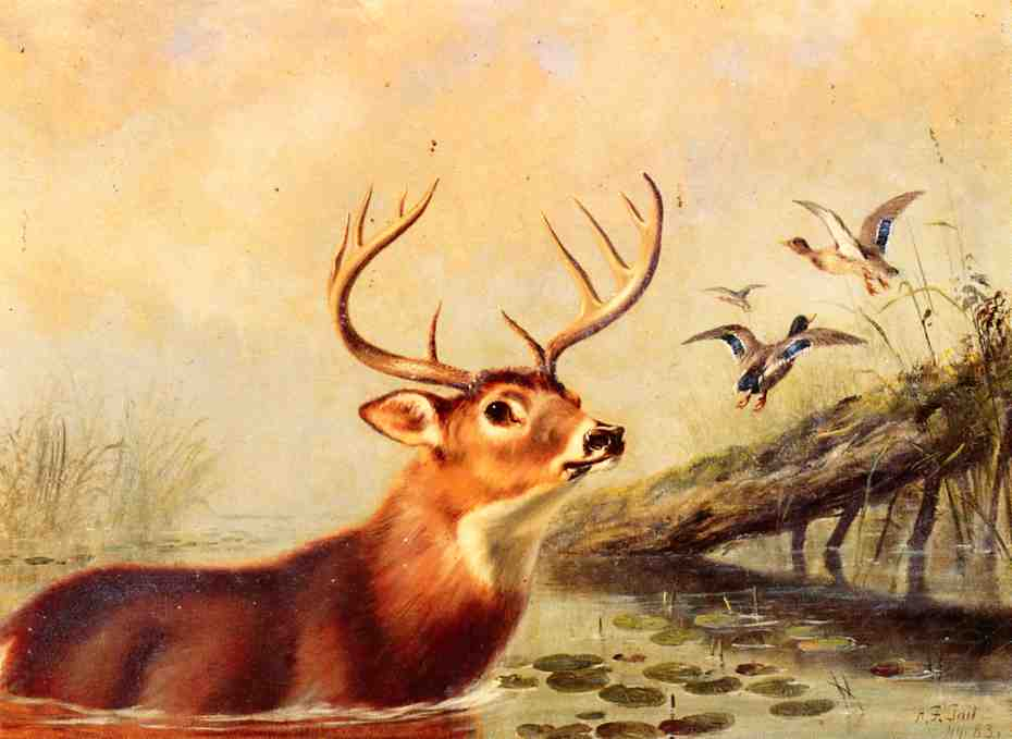 Buck in a Marsh 1883 | Arthur Fitzwilliam Tait | Oil Painting