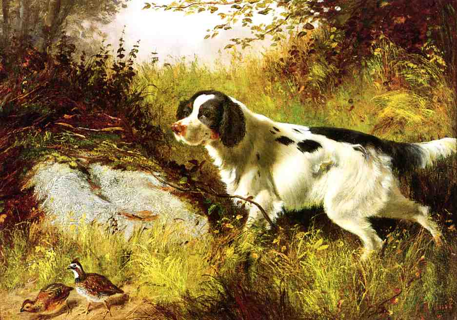 Dog and Quail 1878 | Arthur Fitzwilliam Tait | Oil Painting
