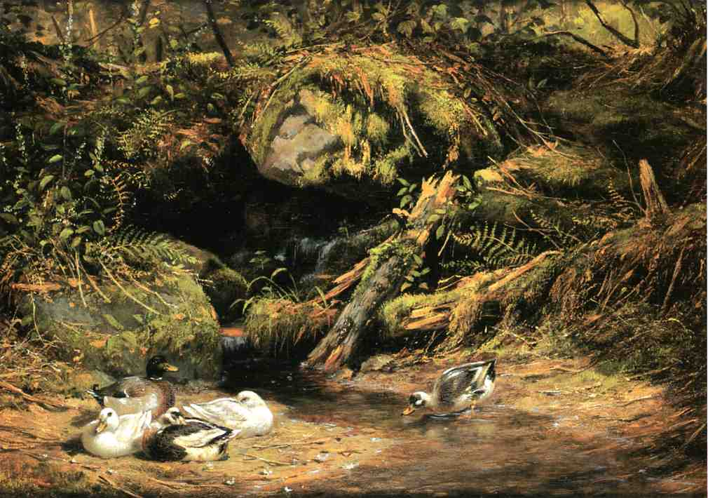 Ducks at the Spring Head 1875 | Arthur Fitzwilliam Tait | Oil Painting