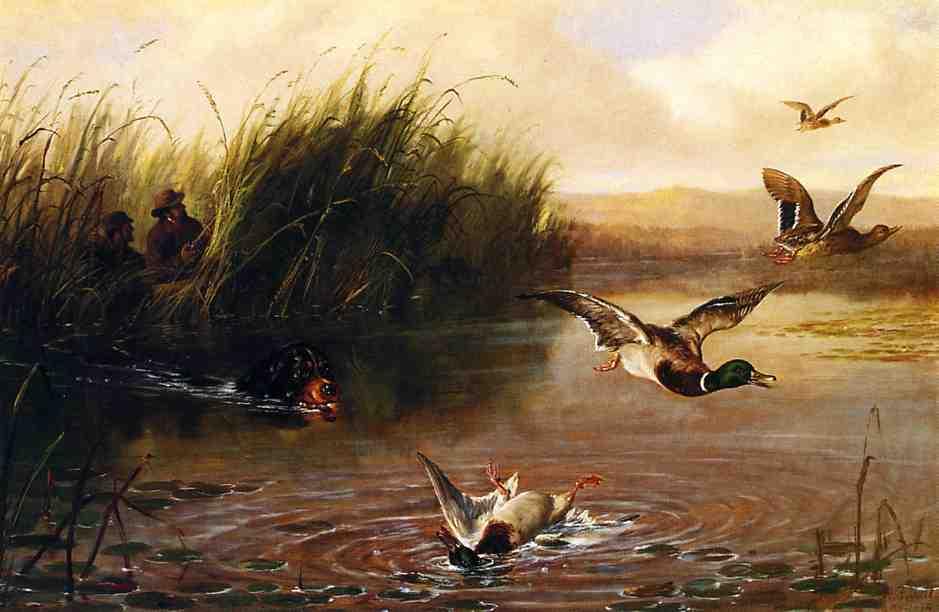 Duck Shooting 1874 | Arthur Fitzwilliam Tait | Oil Painting