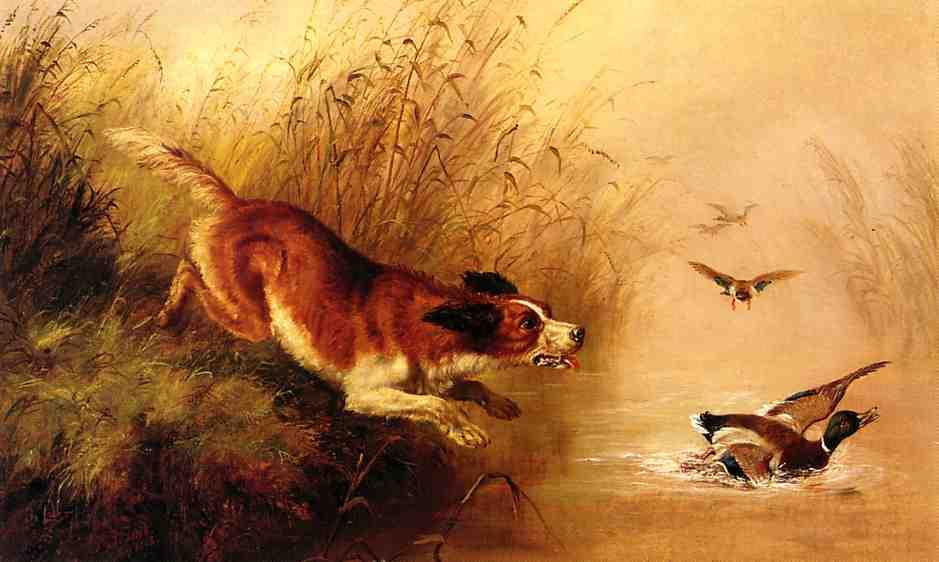 Spaniel Chasing Ducks 1863 | Arthur Fitzwilliam Tait | Oil Painting