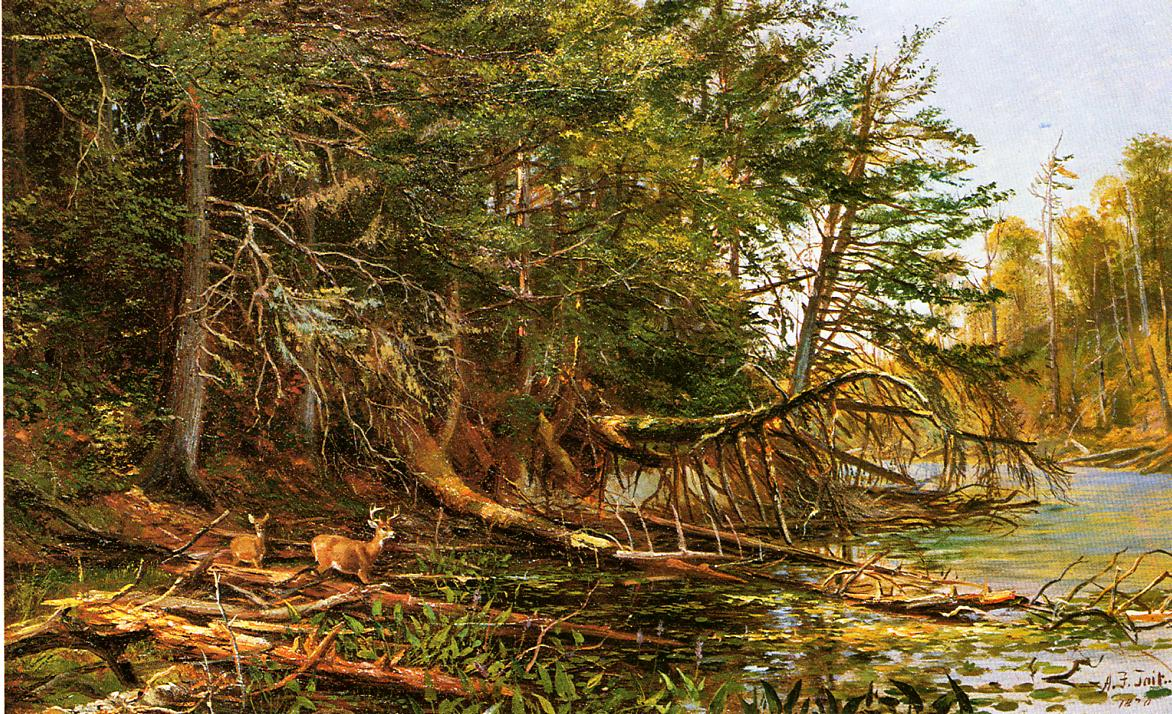 The Outlet of St Regis Lake 1870 | Arthur Fitzwilliam Tait | Oil Painting