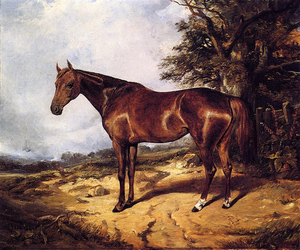 Thoroughbred 1848 | Arthur Fitzwilliam Tait | Oil Painting