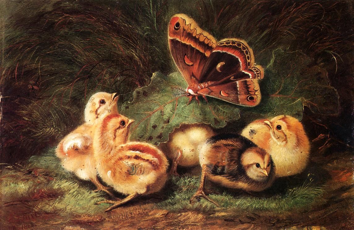 Young Chickens 1863 | Arthur Fitzwilliam Tait | Oil Painting