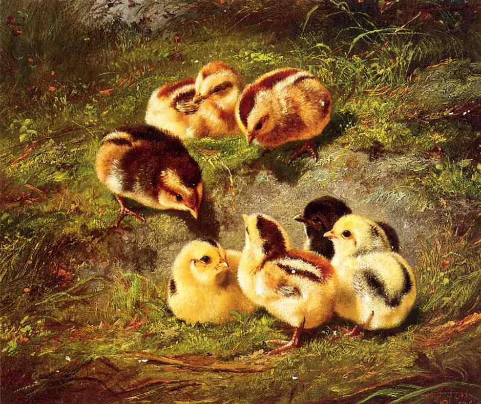 Chickens 1867 | Arthur Fitzwilliam Tait | Oil Painting