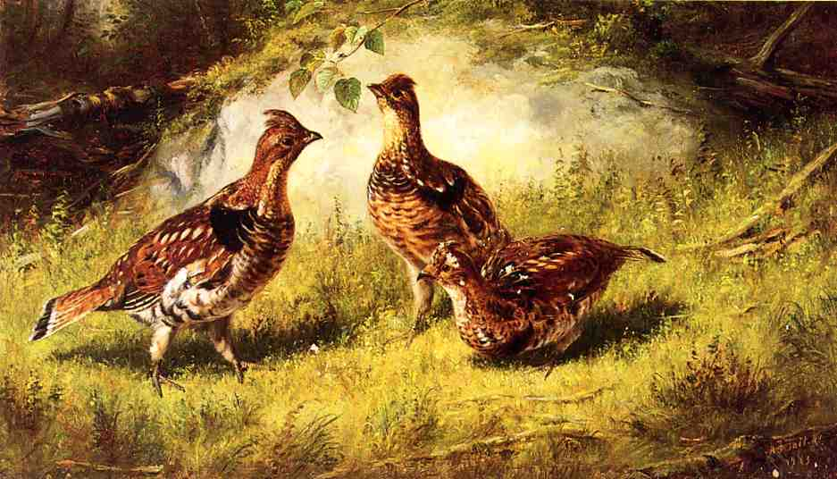 Ruffed Grouse 1883 | Arthur Fitzwilliam Tait | Oil Painting