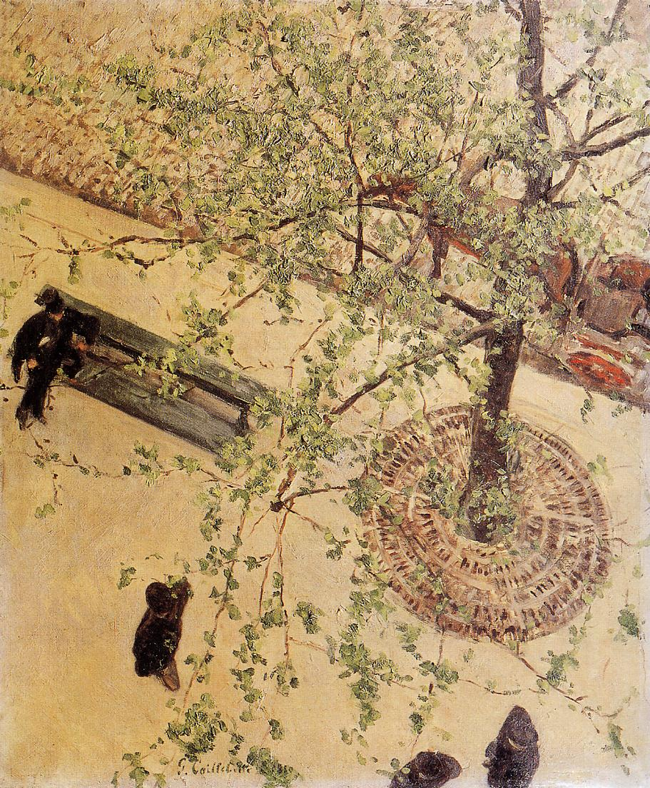 Boulevard Seen from Above  1880   Gustave Caillebotte   Oil Painting