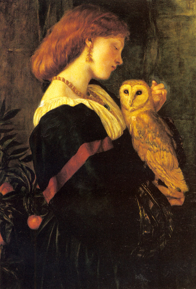 Il Barbagianni | Cameron VaLEntinE Prinsep | Oil Painting