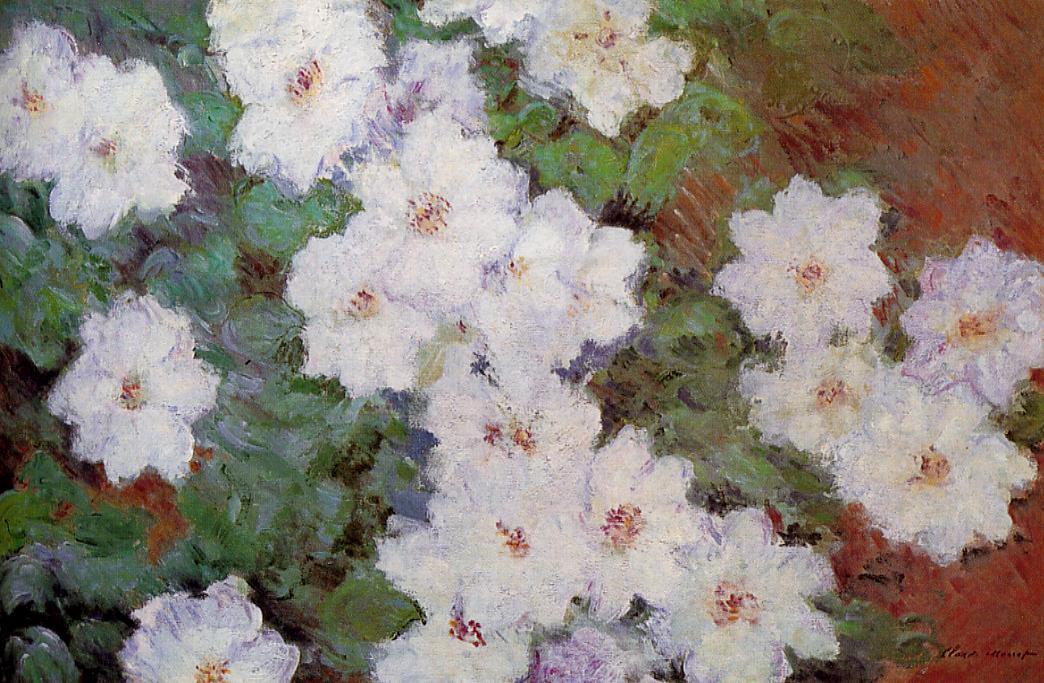 Clamatis 1887   Claude Monet   Oil Painting