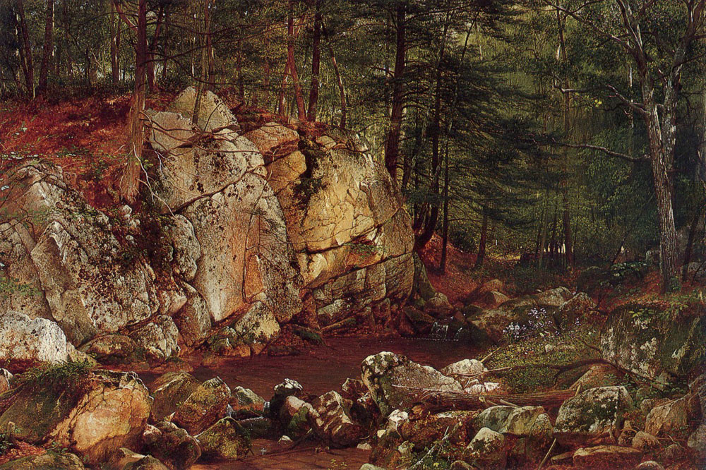 Brook Study at Warwick 1873 | David Johnson | Oil Painting