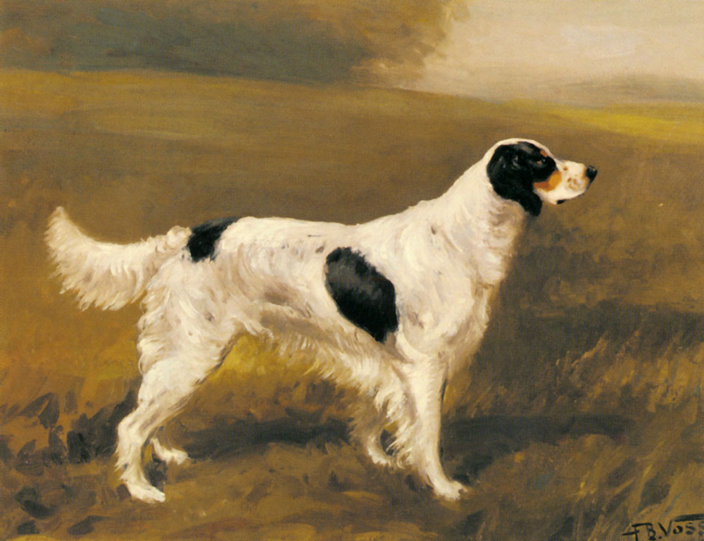 A Setter | Franklin Brook Voss | Oil Painting