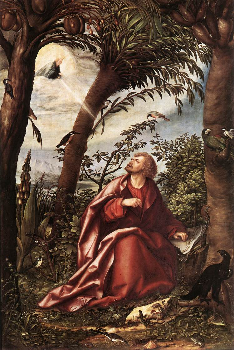 St John The Evangelist In Patmos 1508 | Hans Burgkmair | Oil Painting