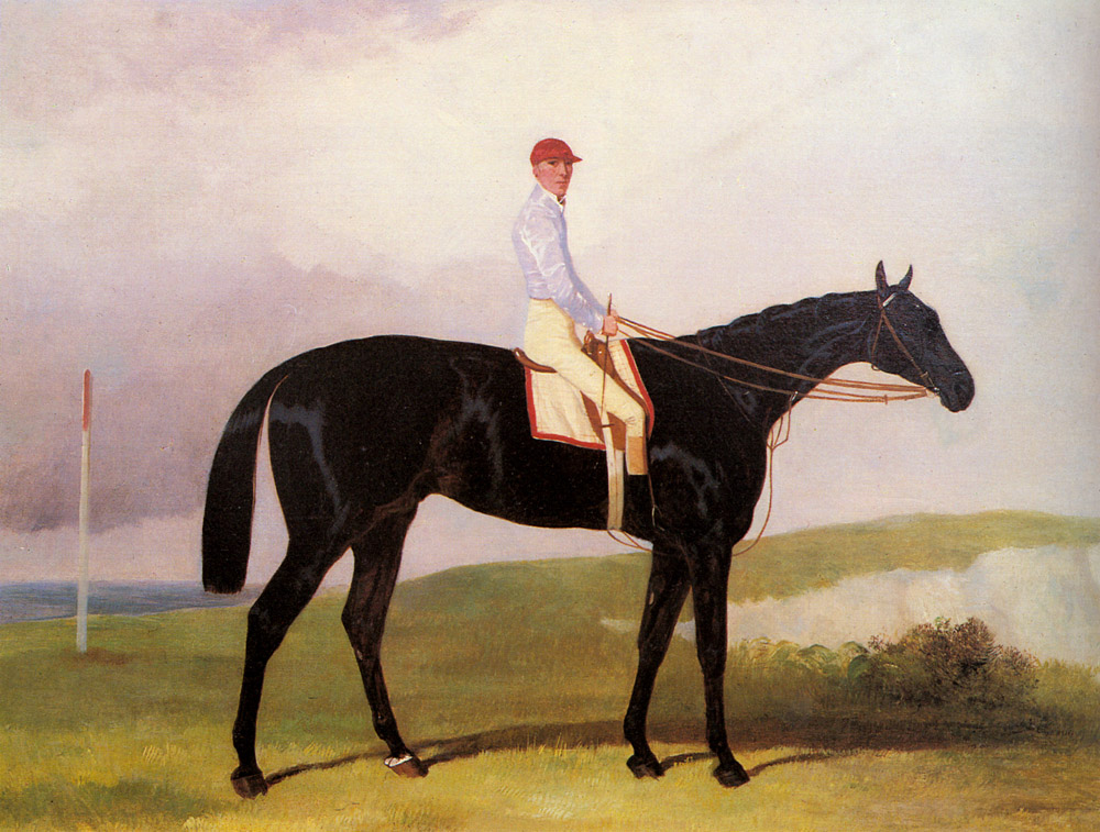 Ellinton A Dark Bay Racehorse With Tom Aldcroft | Harry Hall | Oil Painting