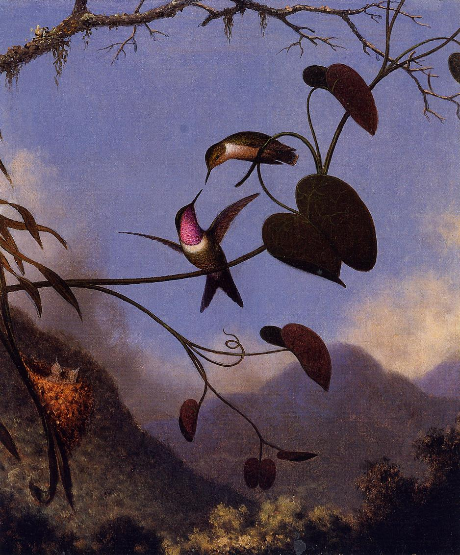 Amethyst Woodstar 1864-1865 | Martin Johnson Heade | Oil Painting