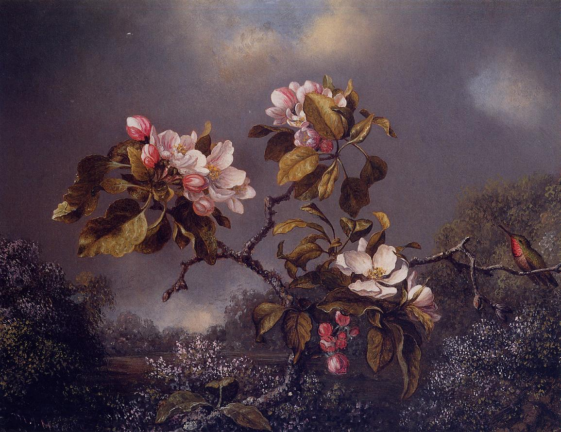 Apple Blossoms and Hummingbird 1871 | Martin Johnson Heade | Oil Painting