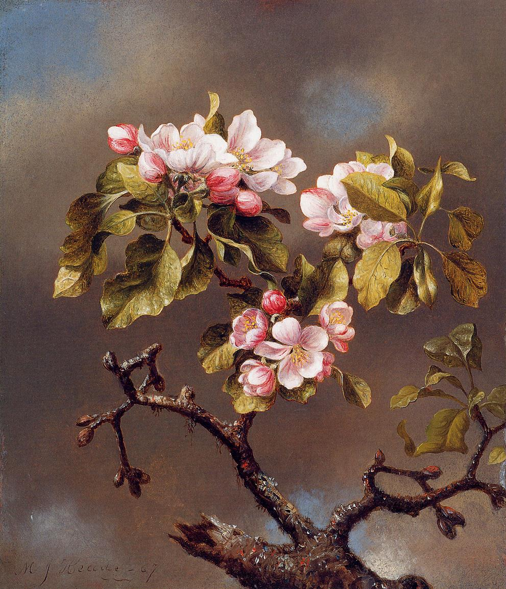 Branch of Apple Blossoms against a Cloudy Sky 1867 | Martin Johnson Heade | Oil Painting