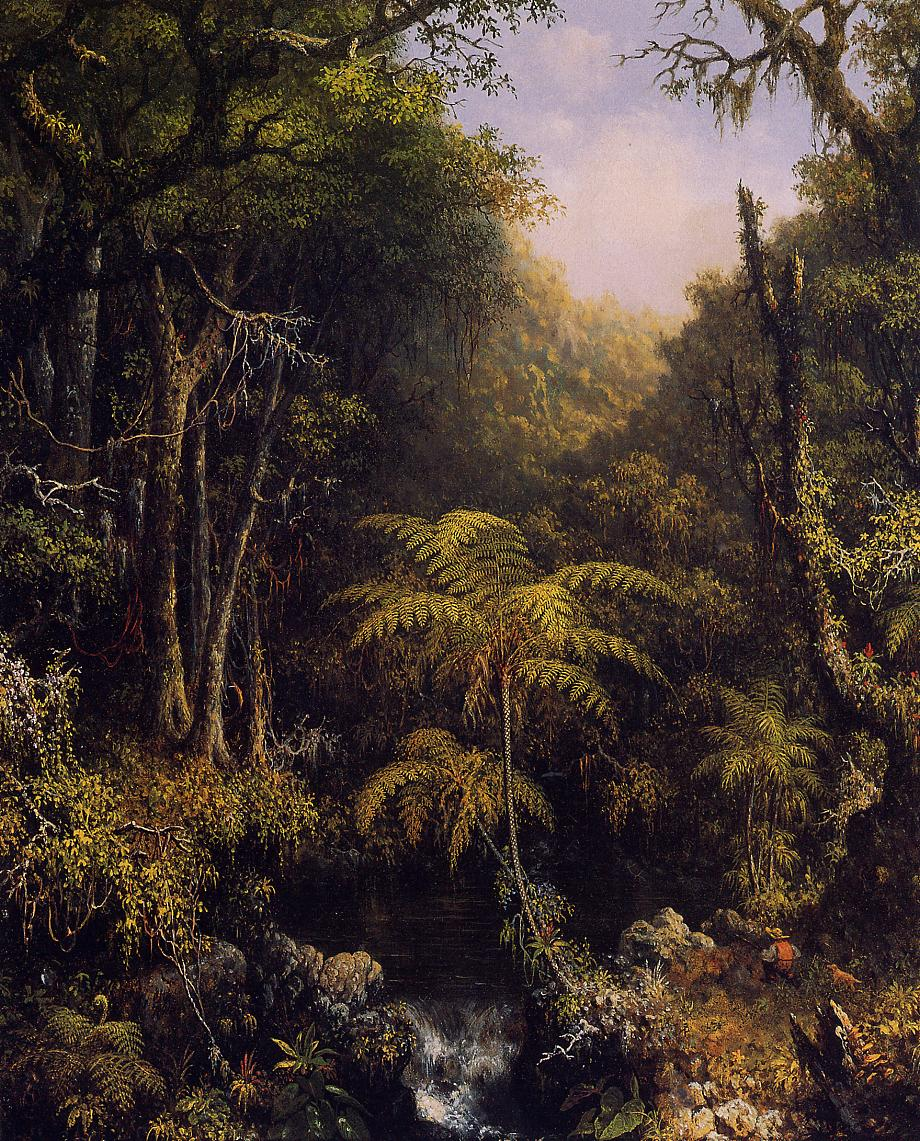 Brazilian Forest 1864 | Martin Johnson Heade | Oil Painting