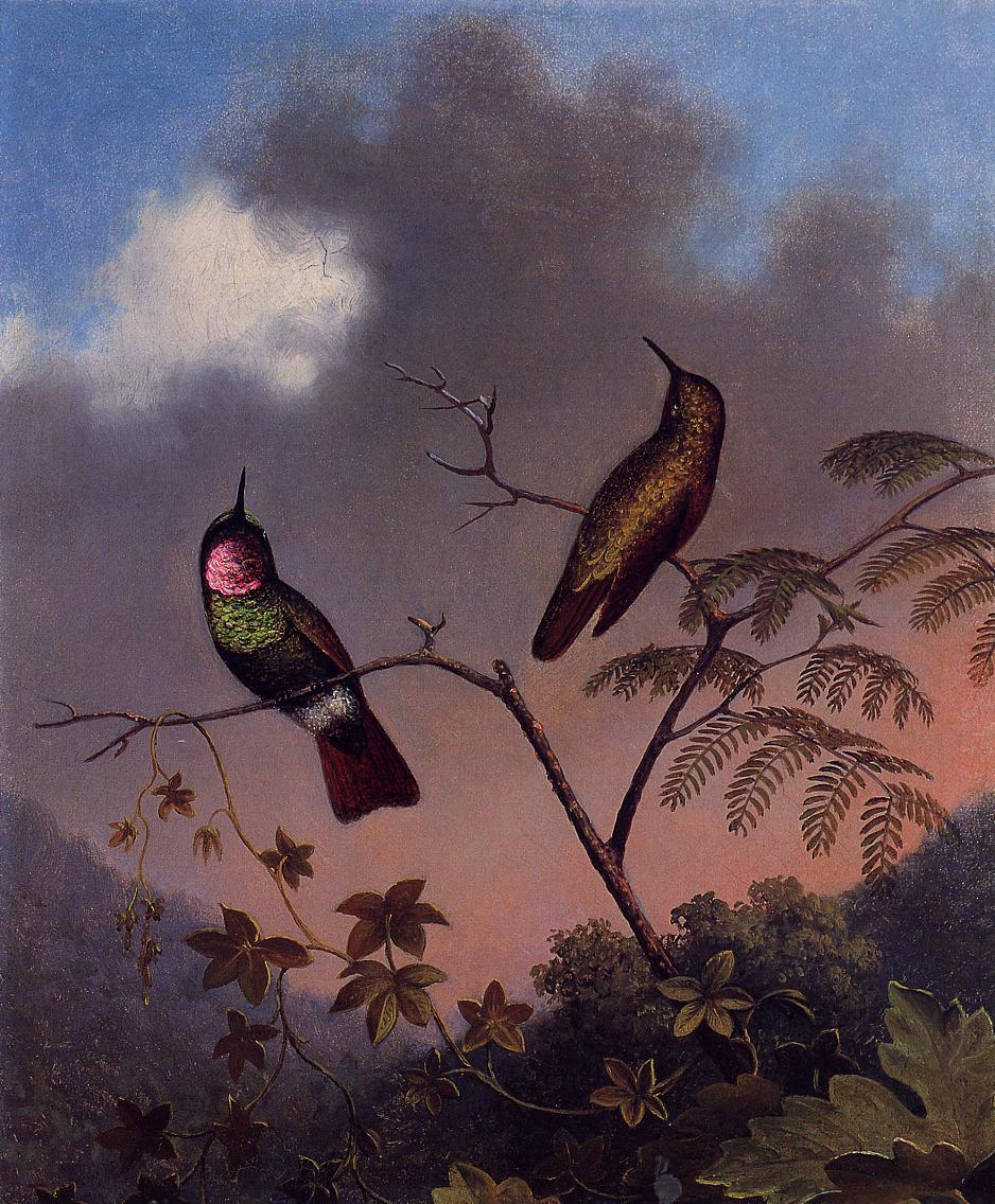 Brazilian Ruby Hummingbirds 1864-1865 | Martin Johnson Heade | Oil Painting