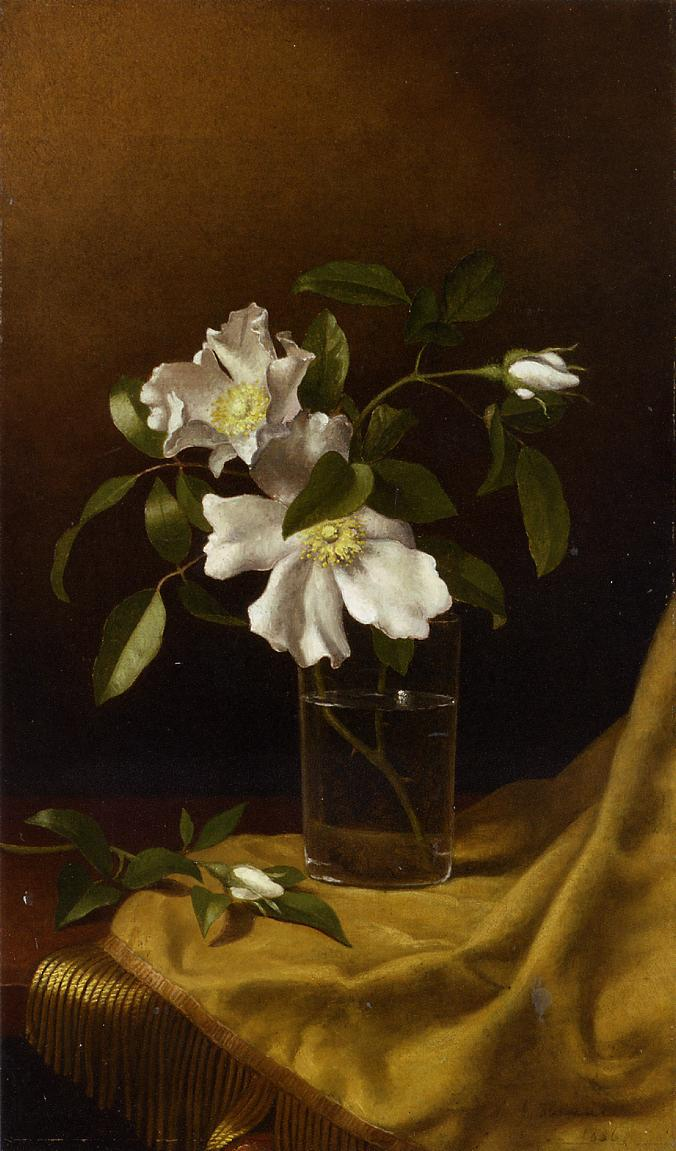 Cherokee Roses in a Glass on Gold Velvet Plush 1886   Martin Johnson Heade   Oil Painting