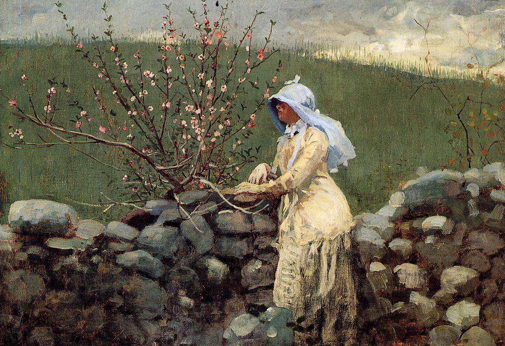 Peach Blossoms 1879 | Homer Winslow | Oil Painting