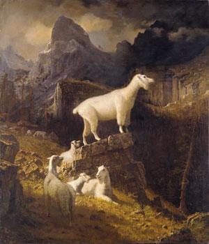 Rocky Mountain Goats 1885 | Albert Bierstadt | Oil Painting