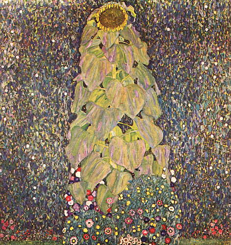 The Sunflower 1906-1907