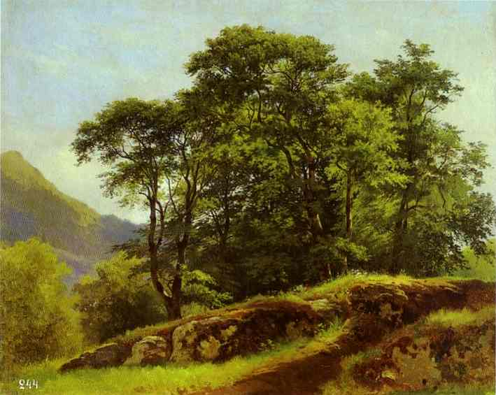 Beech Forest In Switzerland 1863 | Ivan Shishkin | Oil Painting