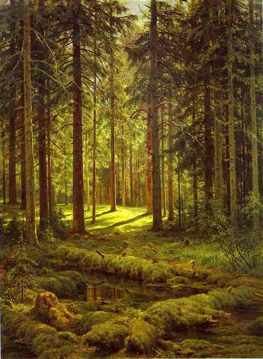 Coniferous Forest Sunny Day 1895 | Ivan Shishkin | Oil Painting