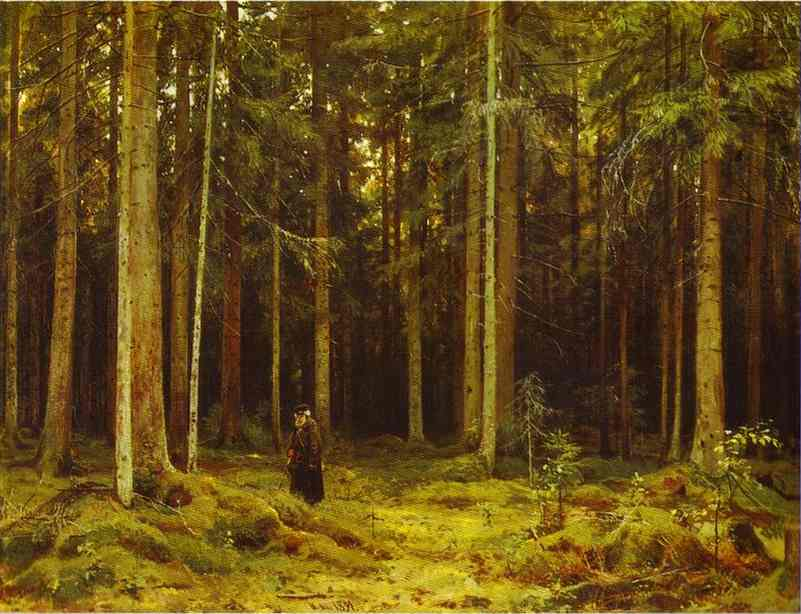 Countess Mordvinovas Forest Peterhof 1891 | Ivan Shishkin | Oil Painting