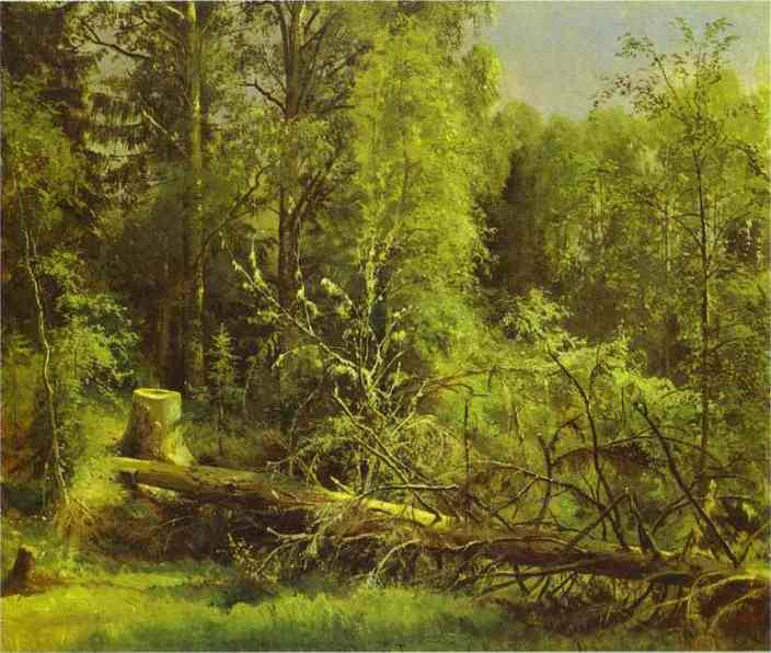 Fallen Tree 1875 | Ivan Shishkin | Oil Painting