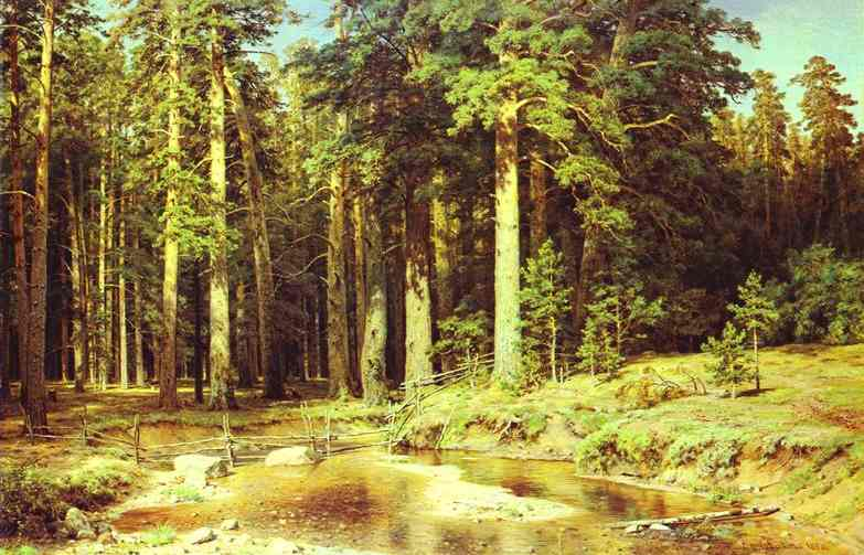 Mast Tree Grove 1898 | Ivan Shishkin | Oil Painting