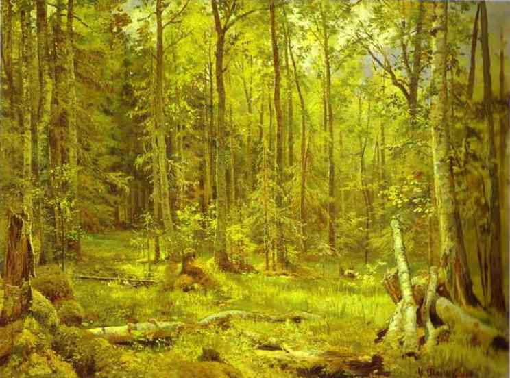 Mixed Forest Shmetsk Near Narva 1888 | Ivan Shishkin | Oil Painting