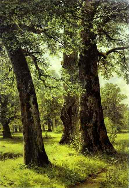 Oaks 1887 | Ivan Shishkin | Oil Painting