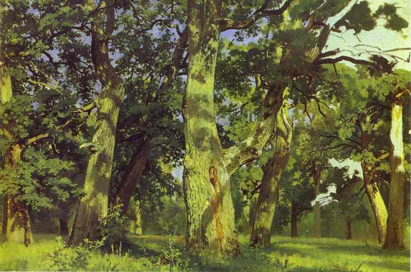Oaks Evening Study 1887 | Ivan Shishkin | Oil Painting