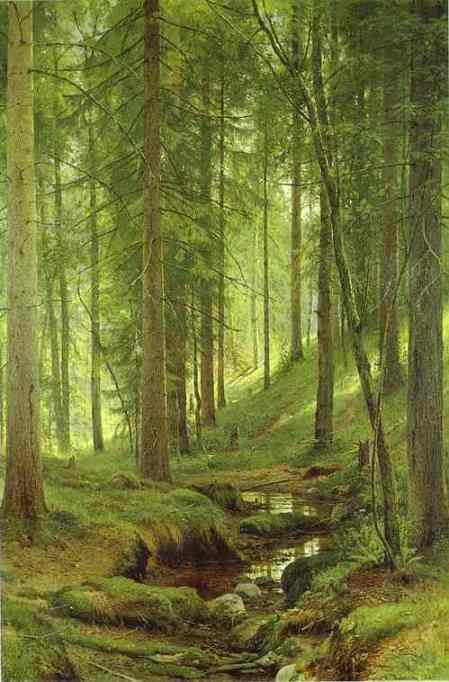 Stream By A Forest Slope 1880 | Ivan Shishkin | Oil Painting
