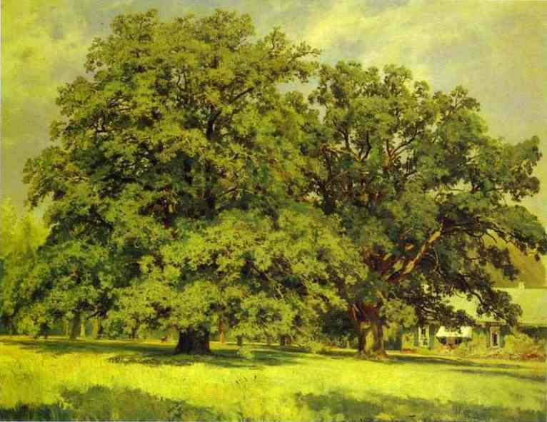 The Mordvinovo Oaks 1891 | Ivan Shishkin | Oil Painting