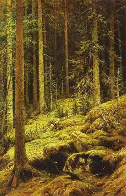 Thickets 1881 | Ivan Shishkin | Oil Painting