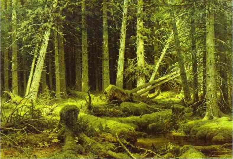 Wind Fallen Trees 1888 | Ivan Shishkin | Oil Painting