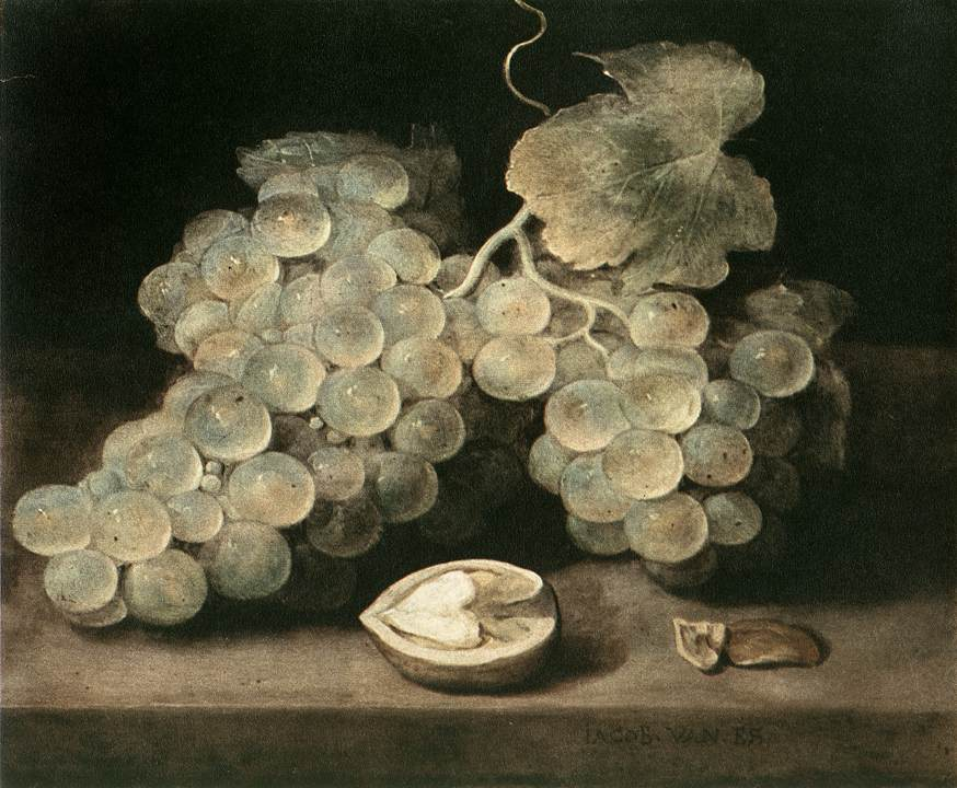 Grape With Walnut | Jacob Van Es | Oil Painting