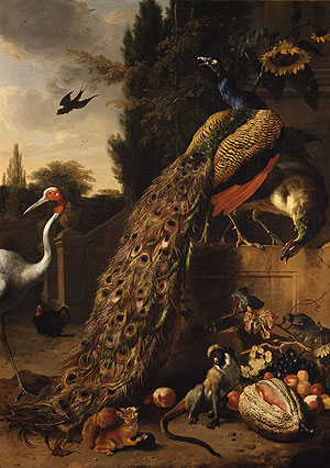 Peacocks | Melchior d Hondecoeter | Oil Painting