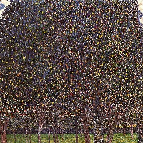 Pear Tree 1903