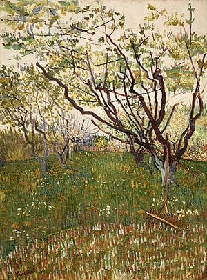 The Flowering Orchard 1888 | Vincent van Gogh | Oil Painting